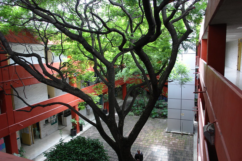 El árbol de Violetta. - Página 6 28425377515_4b4d5602fd_c