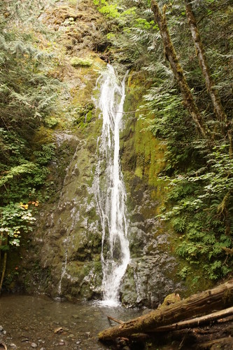 madisonfalls olympicrainforest olympicnationalpark washington usa