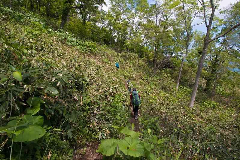 20150614-北海道羊蹄山(2日目)-0209.jpg