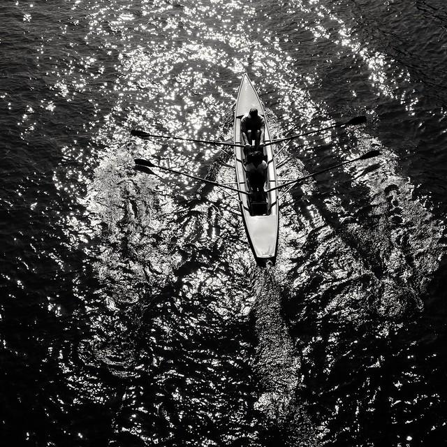 Rowers ( serie black texture )