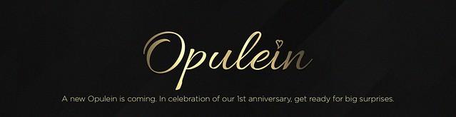 Opulein 1st Aniversary
