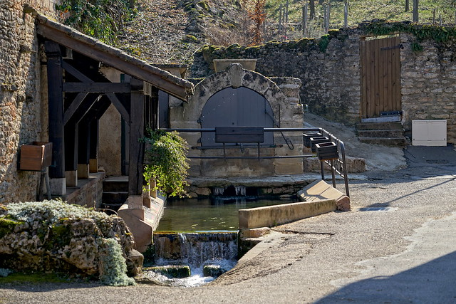 The source and fountain of Romanin