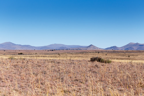 view rock natural landscape cradock peaceful nature southafrica beauty sunrise easterncape background grass blue morning summer country scenery beautiful travel forest scenic plant sky environment green tourism outdoor mountain zaf