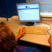 13.09.2013 online survey in STO