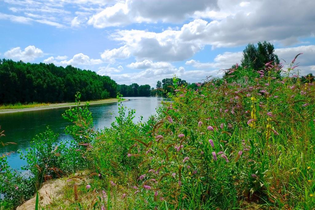 Garonne en été
