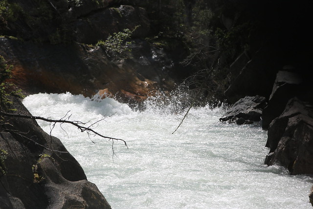 The white waters of the Yoho river