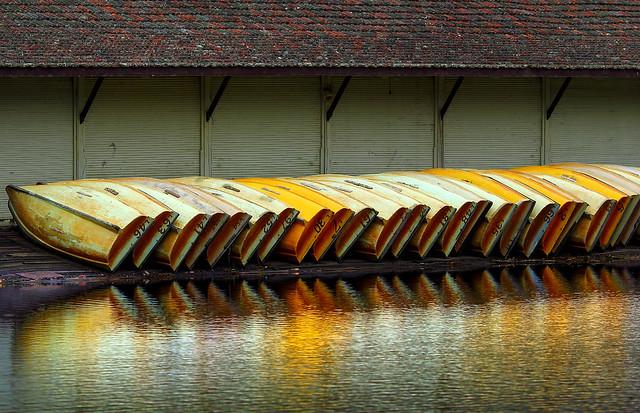 Row of Boats