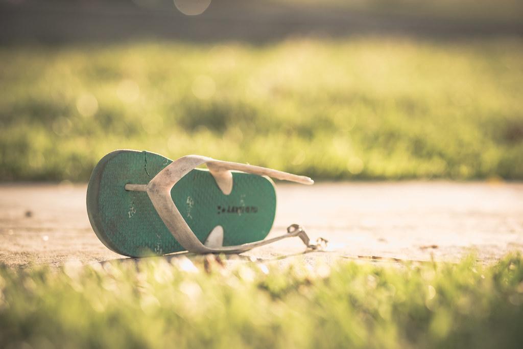 shoo shoe - 197/366