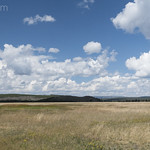 Imperial Meadows