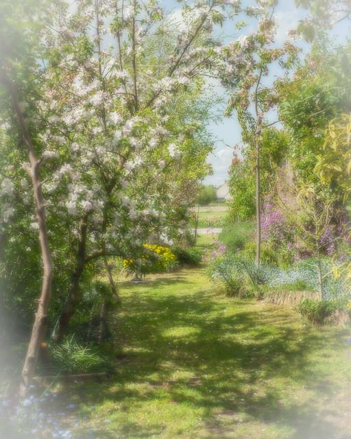 house_20150428_D_0041_orton.jpg