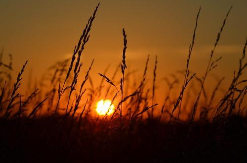 sunset station clouds airport whitehouse nj solberg blimps readington