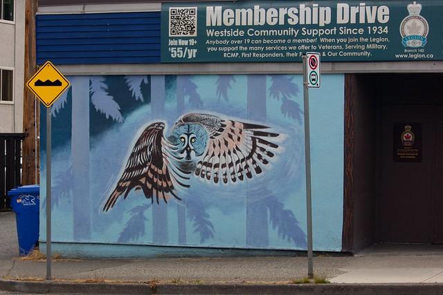 Owl Mural Full