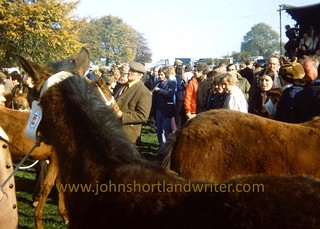 At Stow Horse Fair 1968