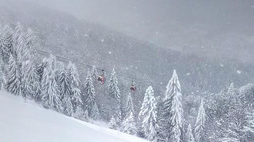 Snowboard @ Azuga   by mergpemunte.ro