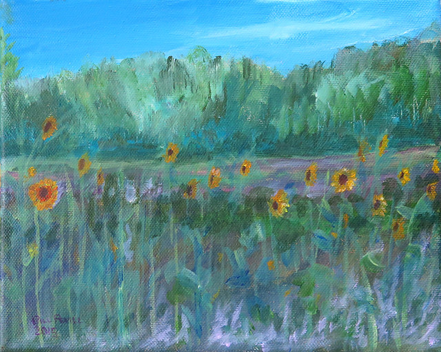 Sunflowers of VT