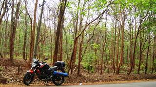 Enroute Hubli, Karnataka   by wanderingjatin