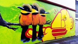 3 Birds   by Viv Lynch