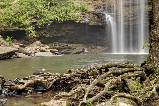 Greeter Falls, South Cumberland State Park, Grundy County, Tennessee 5