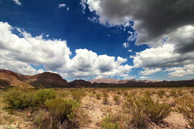 Chihuahuan Desert, Big Bend National Park - Texas