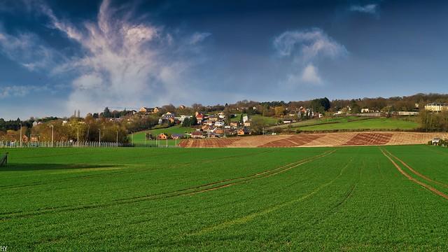 Landscape - 4812