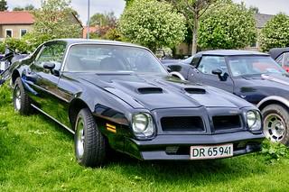 Pontiac Firebird Formula, 1976 - DR65941 - DSC_0815_Balancer