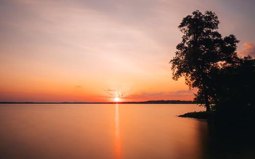 nature sunrise longexposure olympusomdem1markii olympusmzuikodigitaled1240mmf28pro bwnd1000x madison wisconsin olinpark orange sky tree lakemonona yextwisconsin wallpaper background