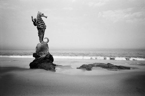 minolta af50bigfinder film 27mmlens aristaedu100 expiredfilm icon statue boy seahorse sand beach ocean pacific laspilitas playalosmuertos banderasbay puertovallarta mexico