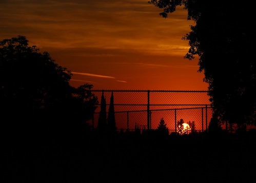 porterville california sunset silhouette trees fence sky