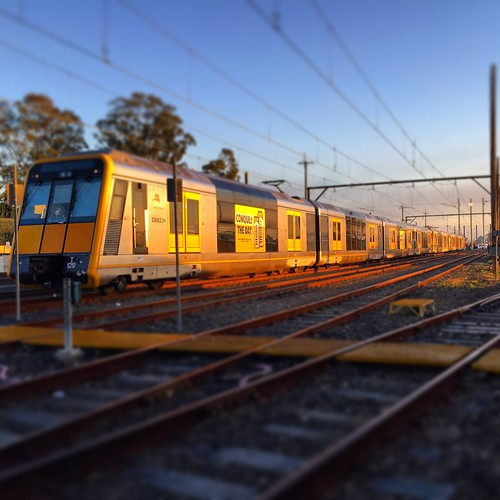 sun yard train sunrise dawn suburban blacktown passenger tangier goldenhour sydneytrains tset criterial