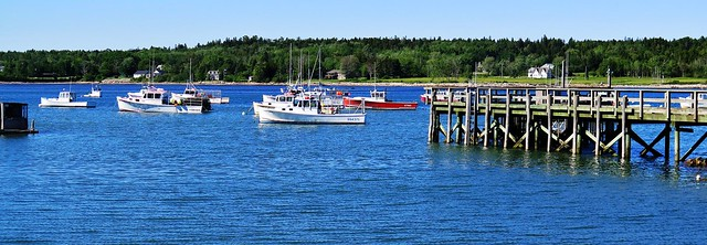 Mt Desert Island Harbor Maine