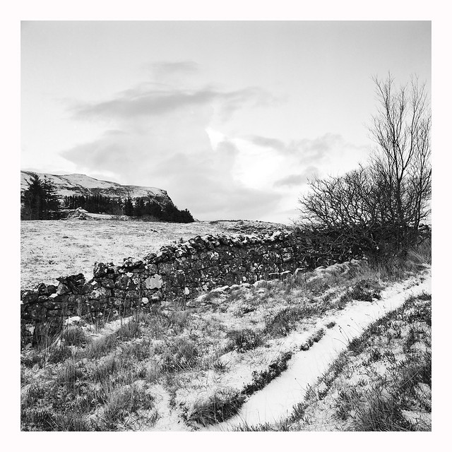Stone Wall - Ilford  XP2