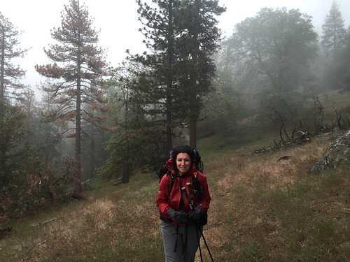 PCT: Day 45