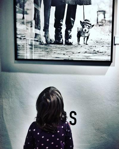 At The Erwitt Exhibition  #kids #kid #mybabygirl #Exhibition #Photography #photo #Margherita #fun #Erwitt #Travel #Travelgram #trip #igers #igersitalia #Italy #amazing #beautiful #love #photooftheday #picoftheday #blackandwhite #meandmybabygirl | by Mario De Carli