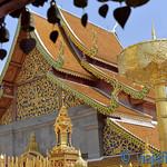 01 Viajefilos en Chiang Mai, Tailandia 169