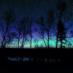 Just a little stripe of Northern Lights last night. #bearskinlodge #gunflinttrail