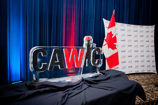 CAWIC Fire & Ice Gala - March 25, 2015