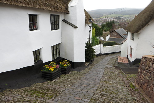 flowers trees white mist church canon town spring view hill cottage steps somerset powershot cobbles daffodils thatched minehead sx280