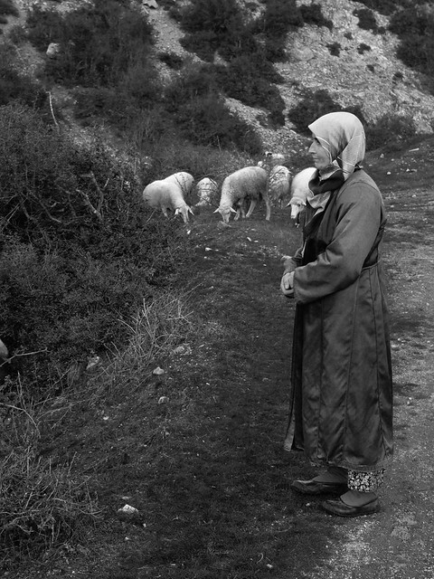 Karlik Village, Balikesir - Turkey. P1080524_sb