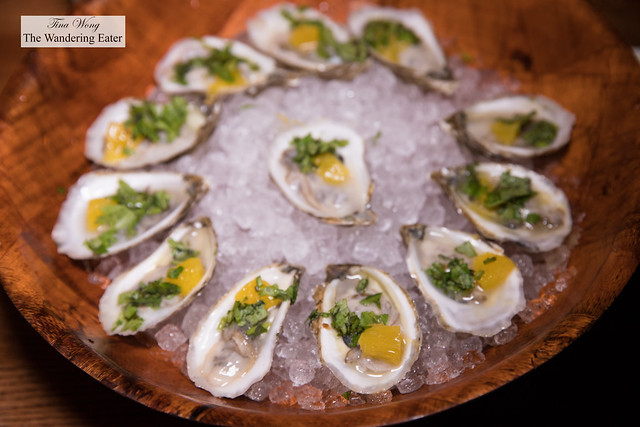 Blue Point and Wellfleet oysters