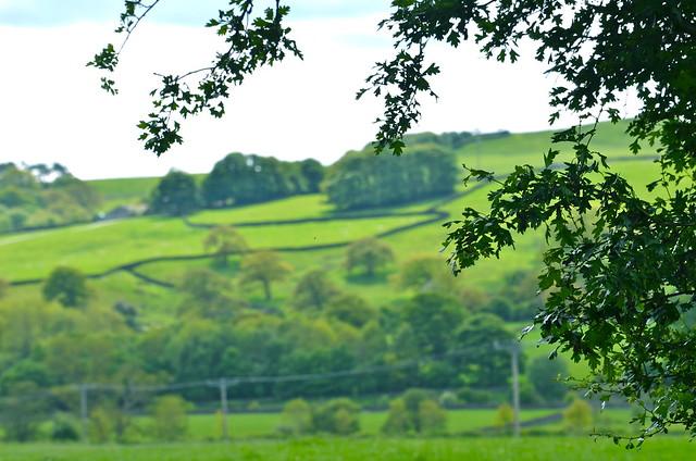 Ljuvliga vyer i Yorkshire