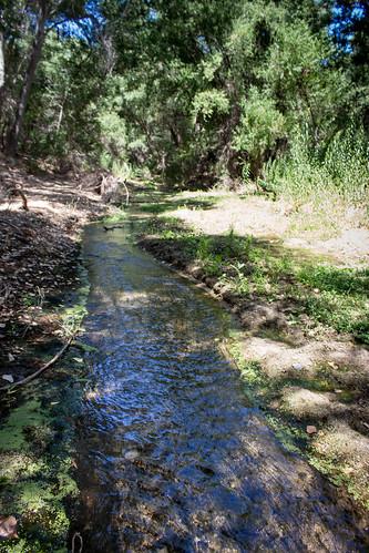 maricopacounty thenatureconservancy canoneosrebelt5i arizona wickenburg river hassayampa unitedstates us canonefs1855mmf3556isstm