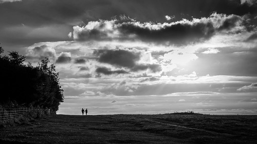 grass natural calm print street beauty background trees plant contrast monochrome woman bw faceless wallart peaceful white fineart countryside tranquil prints country sunset plants figure people europe european outdoor outside tree sky clouds streetphotography sun man photograph nature candid horizontal cloud photo love blackandwhite photography beautiful black field onsale