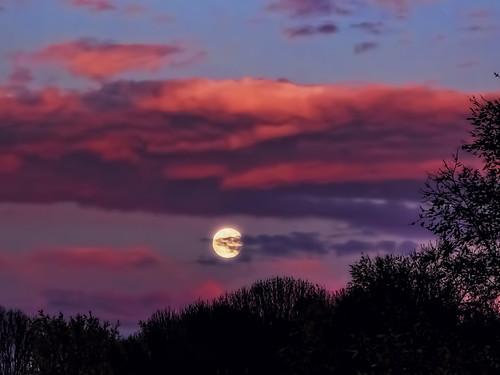 sunset red sky cloud moon color colour netherlands colors yellow clouds contrast landscape utrecht colours bright nederland land provincie panasoniclumix 5074faves flickrelite wimvandem