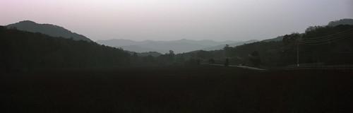 trees rural landscape uv northcarolina uva ultraviolet