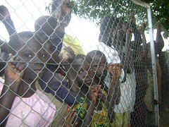 Children on the fence