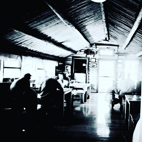 The Wildcat Cafe. The Timeless Beauty And Blur Of The Hist