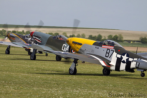 North American Mustangs | by stu norris
