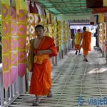 01 Viajefilos en Chiang Mai, Tailandia 024
