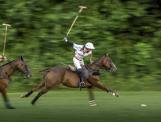 Polo Panning