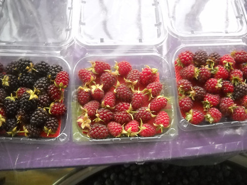 Tout Berry Assorted Berries May 22, 2015 | by toutberryfarms